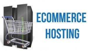 Top-6-Points-To-Consider-in-Selecting-Your-Ecommerce-Hosting-Provider[1]